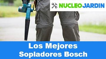 Sopladores de Hojas Bosch